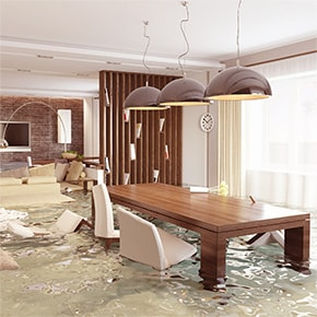 flooted living room